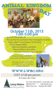 LWBC Animal Kingdom Day 2015
