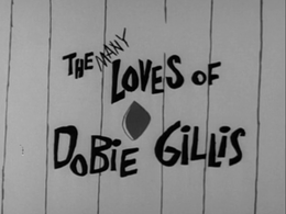 Dobie 1st Season Title Card wikipedia